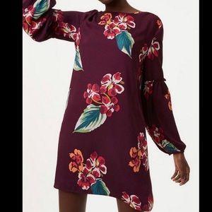 Ann Taylor Loft Purple floral Shift Shirt Dress